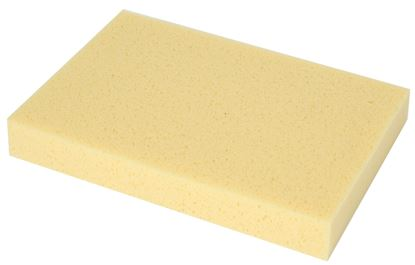 Picture of SPONGE HYDRO (300 X 200 X 40MM)
